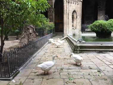 Geese in the cathedral!