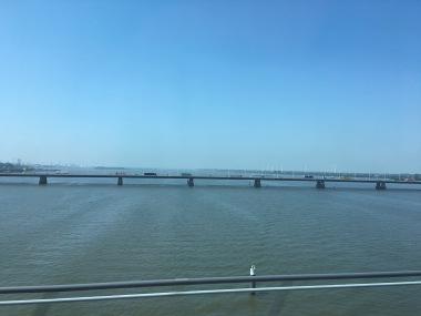 River near Rotterdam